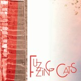 Fuzzing Cats